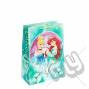 Princess Ariel & Princess Cinderella Gift Bag - Large x 1pc