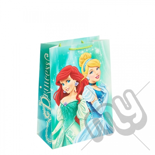 Ariel & Cinderella Gift Bag - Large x 1pc