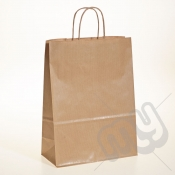 Brown Kraft Paper Bags with Twisted Handles - Large x 25pcs