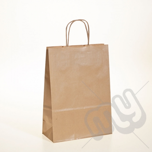 Brown Kraft Paper Bags with Twisted Handles - Medium x 25pcs