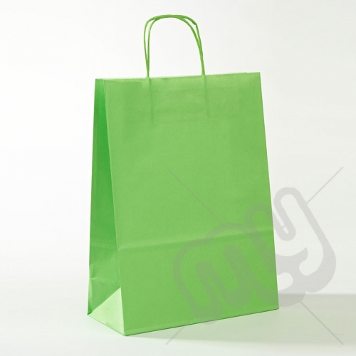 Green Kraft Paper Bags with Twisted Handles - Large x 25pcs