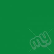 Green Tissue Paper - ½ Half Ream